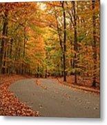 Trees Of Autumn - Holmdel Park Metal Print by Angie Tirado