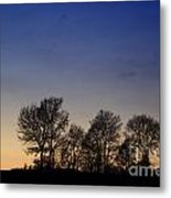 Trees On A Hill In Sunset Metal Print