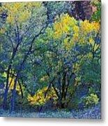 Trees On Edge Of Field In Autumn Metal Print