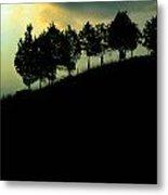Trees On Ridge Metal Print