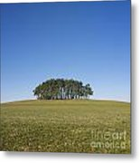 Trees On The Hill Metal Print