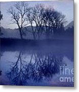 Trees On The Lake Front Metal Print