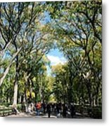 Trees On The Mall In Central Park Metal Print