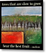 Trees That Are Slow To Grow Poster Metal Print