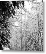 Trees Under The Snow Metal Print