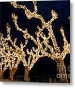 Trees With Lights Metal Print