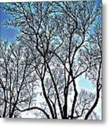 Treescapade Metal Print
