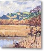 Cors Caron Nature Reserve Tregaron Painting Metal Print