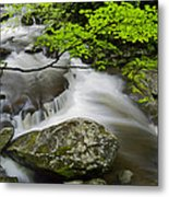 Tremont Spring In Great Smoky Mountains Metal Print