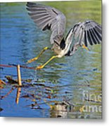 Tri On The Hunt Metal Print