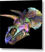 Triceratops Dinosaur Skull Metal Print by Smithsonian Institute
