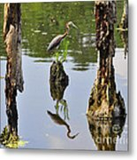 Tricolored Reflection Metal Print