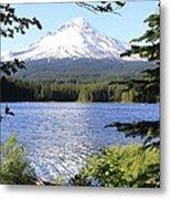 Trillium Lake At Mt. Hood Metal Print