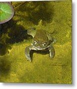 Troll's Toad Metal Print