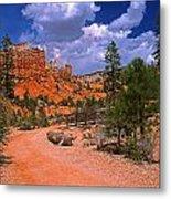 Tropic Canyon In Bryce Canyon Park Metal Print