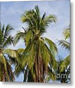 Tropical Cliche Metal Print