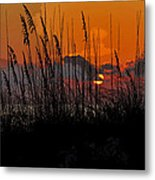 Tropical Evening Metal Print