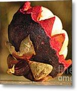 Tropical Mangosteen - The Medicinal Fruit Metal Print