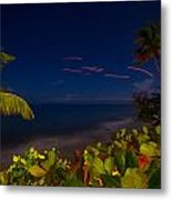 Tropical Night Metal Print by Tim Fitzwater