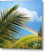 Tropical Rainbow Metal Print