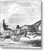 Trotting Horse, 1853 Metal Print