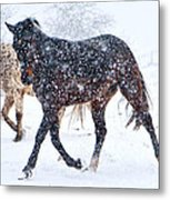 Trotting In The Snow Metal Print