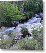 Trout Creek Metal Print