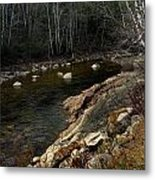 Trout Fishery Metal Print by Skip Willits