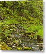 Trout Run Creek 4 Metal Print