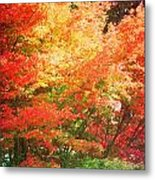 True Colors Metal Print