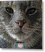 True Unconditional Love Metal Print