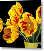 Tulip Bouquet  Metal Print