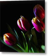Tulip Dream Metal Print
