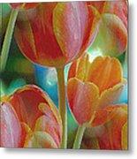 Tulip Fascination Metal Print