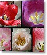 Tulip Sampler Metal Print