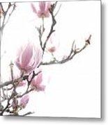 Tulip Tree Metal Print