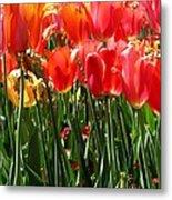 Tulip Uprising Metal Print