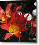 Tulips And Daisies Metal Print