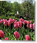 Tulips And Fountain Metal Print