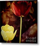 Tulips At Dusk Metal Print