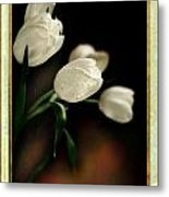 Tulips From The Left Metal Print