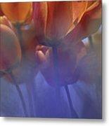 Tulips In Neighbors Garden Metal Print