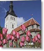 Tulips Outside Niguliste Church Metal Print