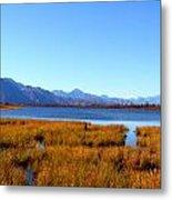 Tundra Lake Metal Print