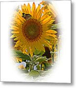 Turn Your Face To The Sun Metal Print