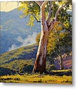 Turon Gum Tree Metal Print