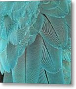 Turquoise Blue Feathers Metal Print