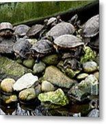 Turtle Island Metal Print