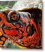 Turtle Smile Metal Print