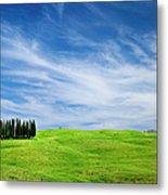 Tuscany Cypress Metal Print